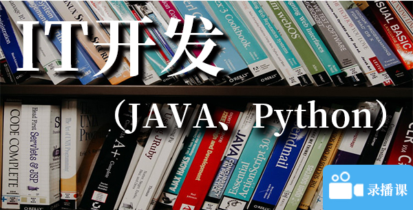 IT开发(Java、Python)